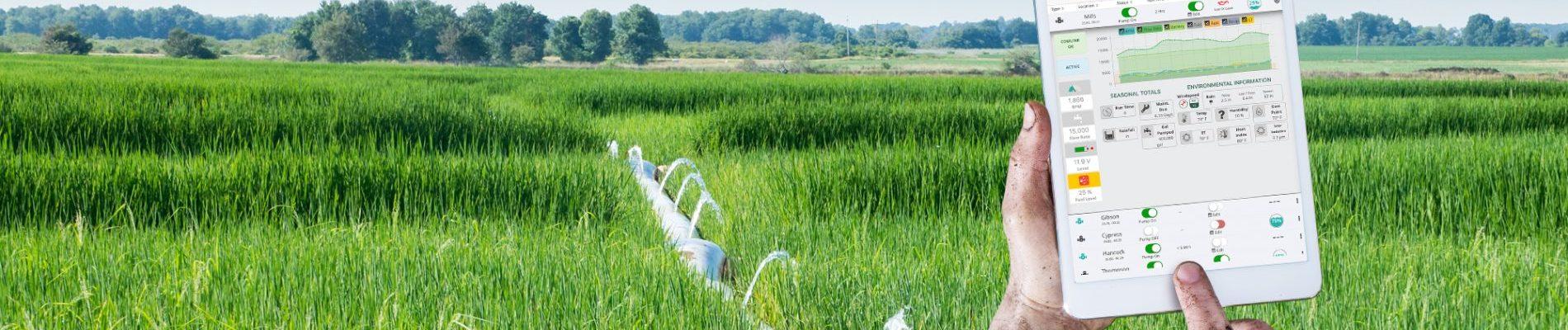 Smart Farm Portal